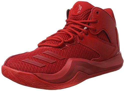 best service ed03a 57552 adidas D Rose 773 V, Scarpe da Basket Uomo