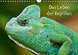 Das Leben der Reptilien (Wandkalender 2019 DIN A4 quer): Echsen, Schildköten, Schlangen aus aller Welt (Monatskalender, 14 Seiten ) (CALVENDO Tiere)
