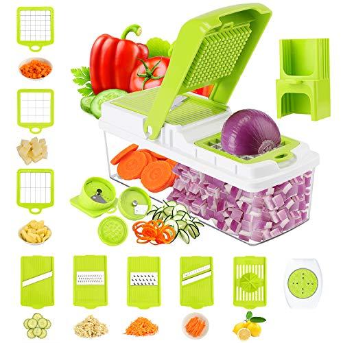TOROTON Gemüsehobel, 14 in 1 Multifunktion Mandoline Gemüseschneider Spiralschneider/Gemüse-Dicer-Onion Veggie Food Salad Chopper - 9 Austauschbare Edelstahl Klingen (Edelstahl Veggie-chopper)