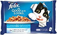 Purina Felix As Good as it Looks Salmon & Tuna Wet Cat Food Pouch, 100 gm - Pack