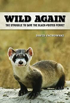 Wild Again: The Struggle to Save the Black-Footed Ferret by [Jachowski, David S.]