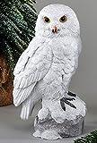 Formano Schneeeule Eule sitzend Dekofigur aus Kunststein weiß Weihnachten Winterdeko (25 cm)