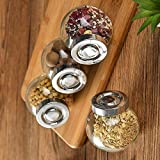 DARED Mini Set of 4 Spice Glass Storage Jar for Masalas, Dry Fruits, Mouth Fresheners Storage Jar and Container with Rust Pro