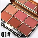 Die besten Blush Palettes - BrilliantDay Professionelle 6 Farben Gesicht Puder Rouge Blush Bewertungen