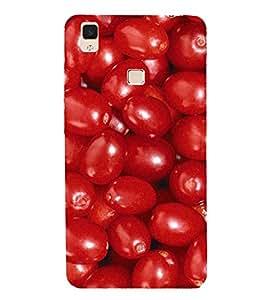 PrintVisa Red Grapes Pattern 3D Hard Polycarbonate Designer Back Case Cover for vivo V3Max
