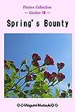 Photos Collection ― Garden Ⅷ ― Spring's Bounty
