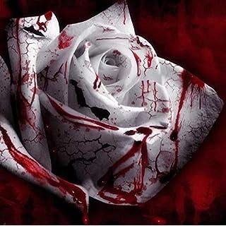 Portal Cool Usa Verkäufer-100Pcs Weiß Blut-Rosen-Pflanze Blumensamen Blumengarten Asaka Rare
