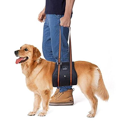 Hundegeschirr Tragehilfe, PETBABA Hebehilfe Rehabilitation Hunde Geschirr mit Griff für Hunde Verletzungen und Arthritis XL
