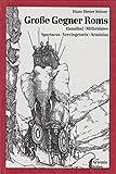 Große Gegner Roms. Hannibal, Mithridates, Spartacus, Vercingetorix, Arminius - Hans Dieter Stöver