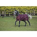 Horseware Amigo Hero ACY Lite 0g Disc Front Regendecke Burgundy/Orange (155)
