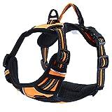 Einstellbare, nicht gezogene Hundegeschirre Haustierweste mit 3m reflektierendem, weich gepolstertem Schwerlastgriff für Training oder Gehen (L-Brust Größe: 27-32in, Orange)