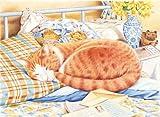 Reeves Malen nach Zahlen Buntstifte Katze