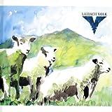 Volk. Limited Hardbook Edition