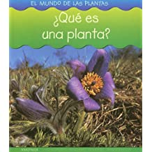 Que Es Una Planta? (El Mundo De Las Plantas/world of Plants)