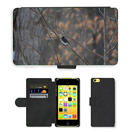 Just Mobile pour Hot Style Téléphone portable étui portefeuille en cuir PU avec fente pour carte//m00139068Oiseaux d'hiver branche de la forêt/arbre/Apple iPhone 5C