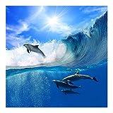 Vliestapete–Spielen Delfine–Wandbild quadratisch