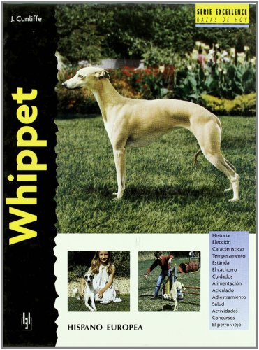 Whippet (Excellence)