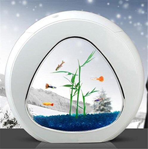4L alimentazione interna Filtro acrilico illuminazione a LED piccolo acquario