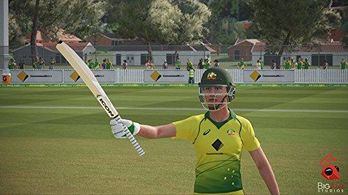 Ashes Cricket  screenshot