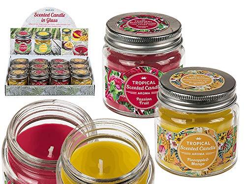 12x Duftkerze Tropical im Glas Frucht Duft Kerze Aromakerze Sortiert Teelicht