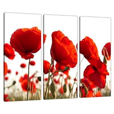 Set of Three Red Poppy Canvas Prints Pictures Wall Art Poppies 3056
