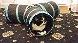 Katzen Tunnel Spielzeug, Kany 3 Way Fun Run To Keep Cat Entertained Trainieren und Spielen wie Katzenminze für Kätzchen Best Play House Ferienwohnung zu stoppen Meowing Hilfe und Verkratzen -