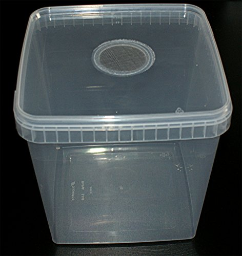 Insect Box 5,8L Zuchtbehälter Drosophilazucht, Fruchtfliegen, Spinnenzucht mit Gaze Deckel, Heimchendosen
