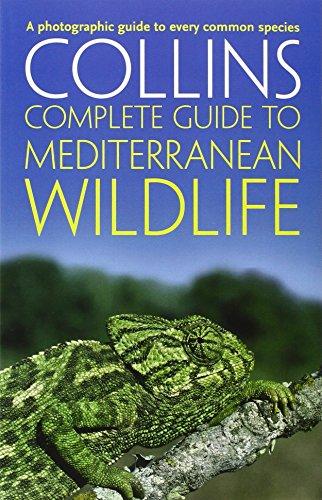 Collins Complete Guide To Mediterranean Wildlife
