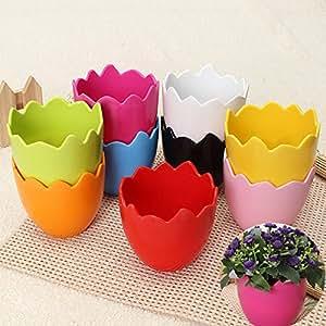 Mode Mini coquille d'oeuf en plastique plantation intérieure pots de fleurs