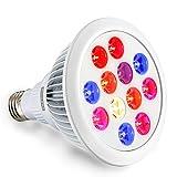 Swiftrans LED Lampe de Croissance 24W Ampoule avec Spectre Complet pour Les Plantes d'intérieur Culture de Serre et Hydroponique