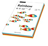 Papyrus 88043188 Druckerpapier Rain...