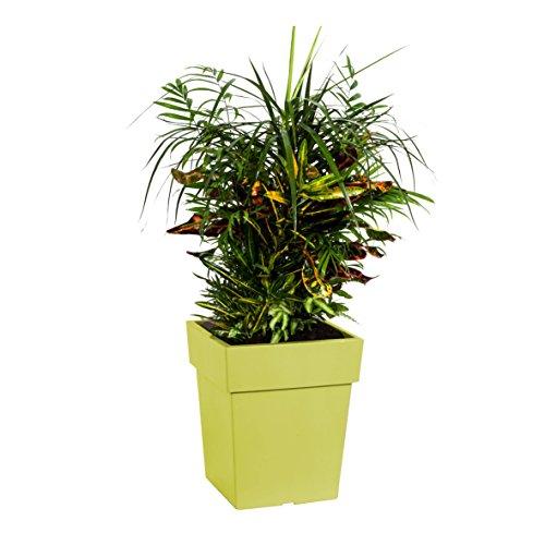 Pot de Linea 27 x 27 h = 34 cm Vert Polypropylène Jardinière Pot Jardinière Pot à Herbes Jardin Pot de repiquage Pots Pot Pot balcon pot fleurs plastique
