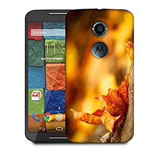 Snoogg Dried Leaf Designer Protective Phone Back Case Cover For Moto X 2nd Generation