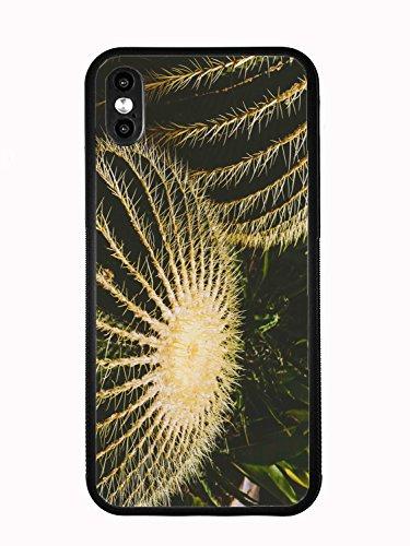 Atomic Market Schutzhülle für iPhone XS MAX 6,5 2018 Kaktus mit Vintage Filter