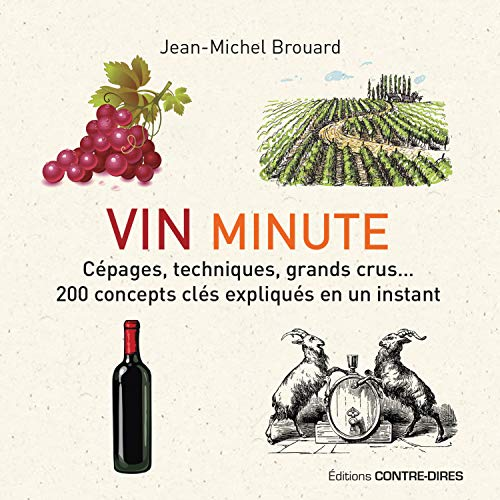 Vin minute : Cépages, appellations, grands crus. 200 concepts clés expliqués en un instant