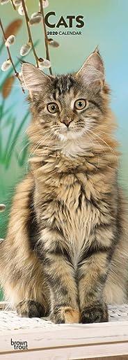 Cats 2020 Slim Calendar