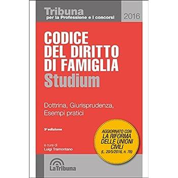 Codice Del Diritto Di Famiglia Spiegato Con Esempi Pratici, Dottrina, Giurisprudenza E Appendice Normativa