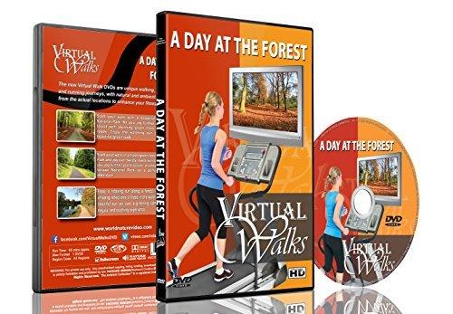 Virtuelle Spaziergänge - Ein Tag im Wald für Indoor Walking, Laufband und Radfahrworkouts
