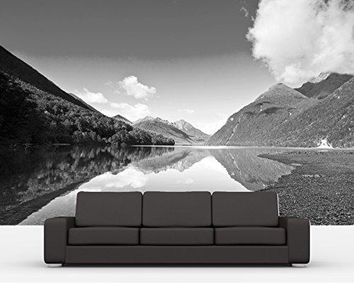 bilderdepot24-vlies-fototapete-lake-gunn-neuseeland-schwarz-weiss-225x150-cm-direkt-vom-hersteller-i