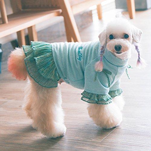 Touchdog Sweet Puppy Dog Princess Bow Kleid Spitze Hemd (Pudel Rock Grüne)