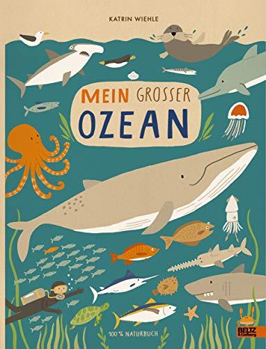 Mein großer Ozean: 100 % Naturbuch - Vierfarbiges Pappbilderbuch - Fauna Muscheln