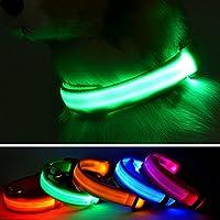 Collar para perro con luz LED de Domii.home, recargable, para la seguridad nocturna, collar para perro con hebilla ajustable
