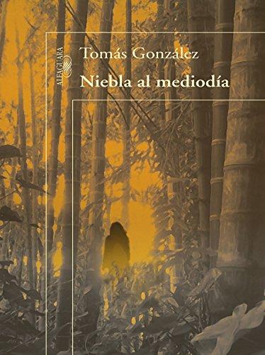 Niebla al mediodía por Tomás González