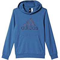 adidas YB Logo Hood Sweatshirt für