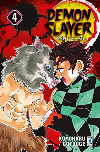 Demon slayer. Kimetsu no yaiba