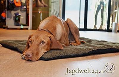 twelv Pointer Perros techo Pro térmica cama para perros extraweich