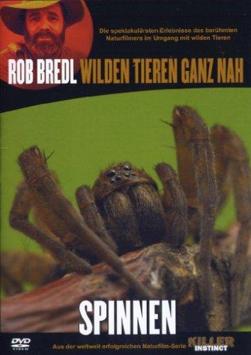 Killer Instinct - Spinnen