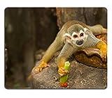 Liili Mauspad Naturkautschuk Mousepad Bild-ID: 15794013Kissenhülle Eichhörnchen Affe einen gemeinsamen Eichhörnchen Affe Saimiri sciureus
