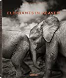Elephants in Heaven - Joachim Schmeisser