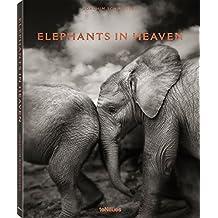 Elephants in Heaven